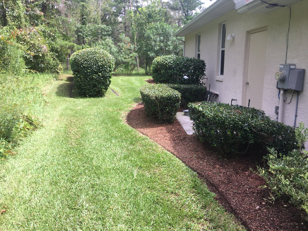 0 replies 0 retweets 0 likes - Toms Lawn And Garden