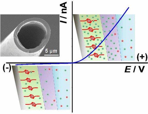 online фотон нейтринные процессы во внешнем магнитном поле и плазмедиссертация
