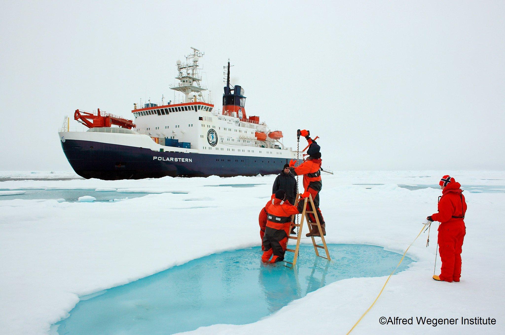 достопримечательность фотографии русские исследователи арктики сохранили дружеские отношения