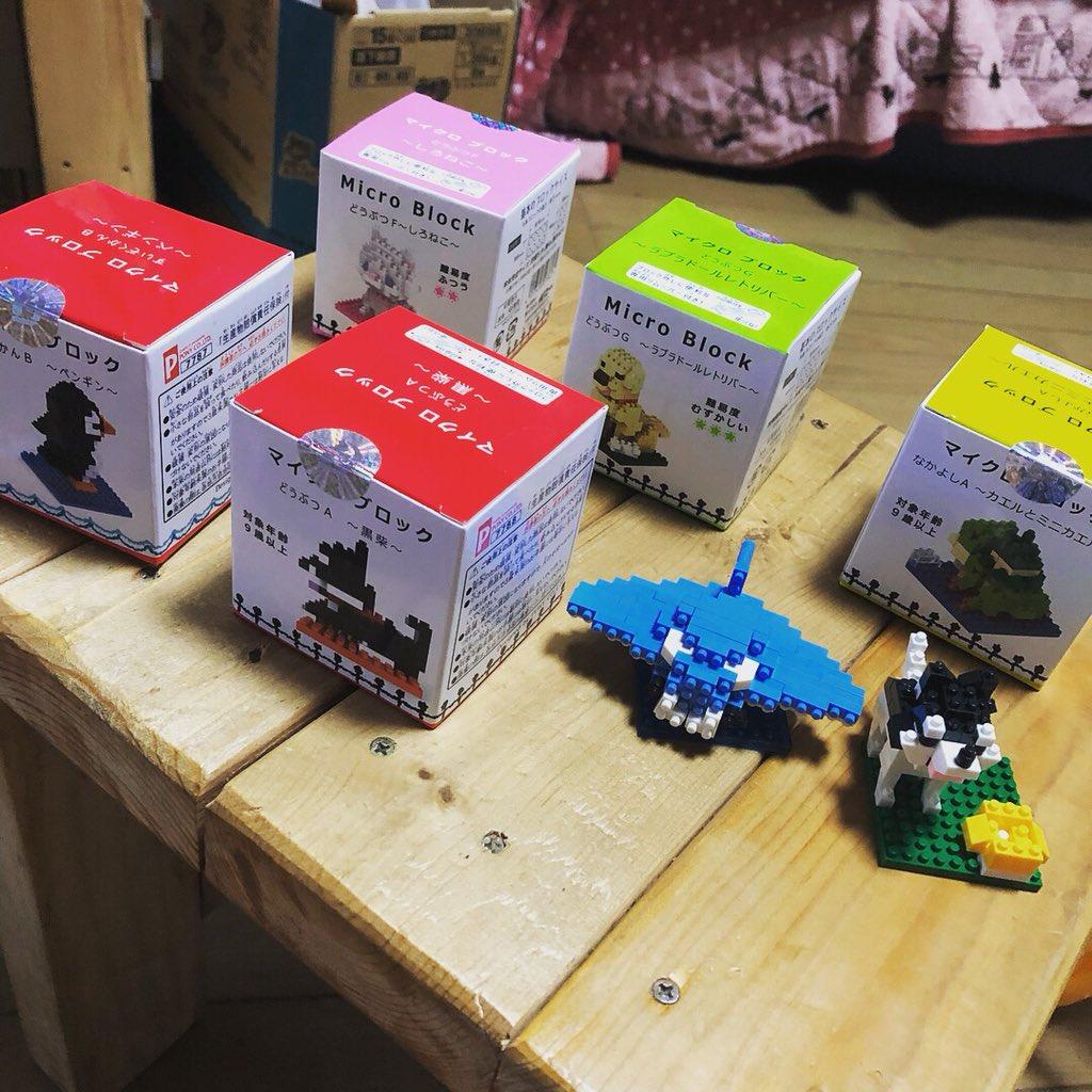 test ツイッターメディア - ここ最近、セリアとダイソーで見つけたミニブロックの作成にハマってます??(笑) 一部ですが、ケースに入れて観賞用にしてみました?? まだ、他にも作成するのあるので~動物園が完成しそうです?? #ダイソー #セリア #ちまちました作業が好き #ミニブロック https://t.co/w98ZJBqPNq