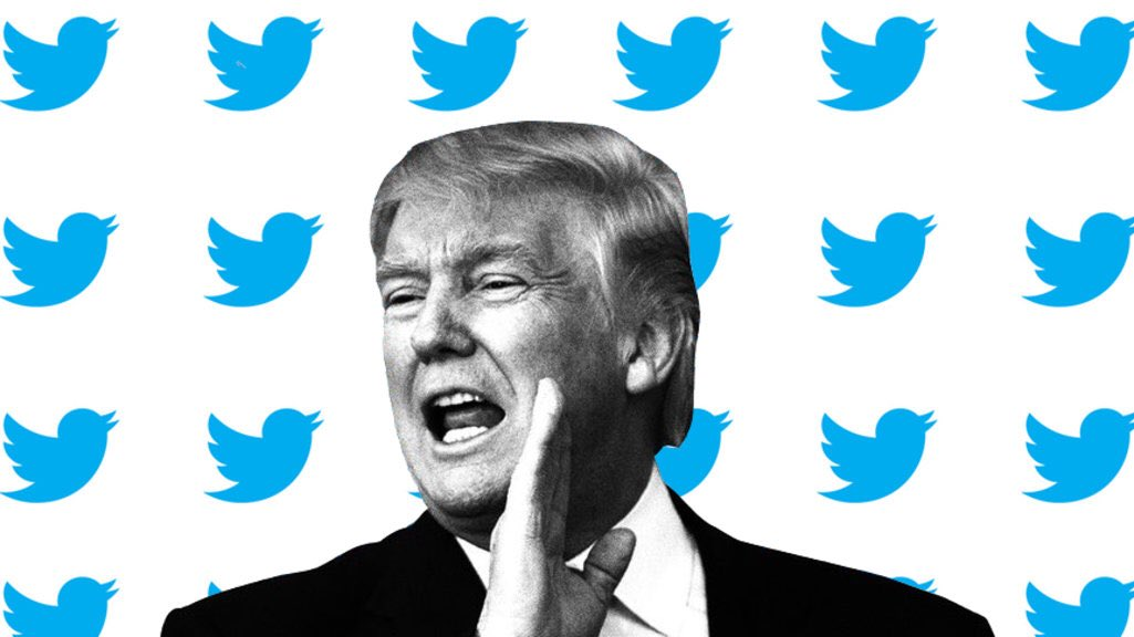 Член Совета Федерации высказался на тему заблокированных аккаунтов Трампа