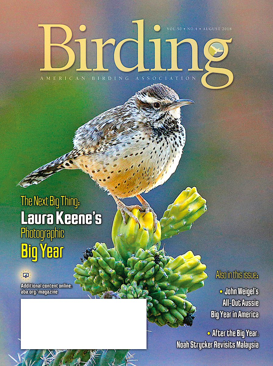 The August 2018 Birding, winging its way to @ABA members mailboxes right now, features articles on John Weigels record-breading 2016 Big year, Laura Keenes unprecedented Photo Big year, Snail Kite and Rusty Blackbird biology, and plumage terminology.