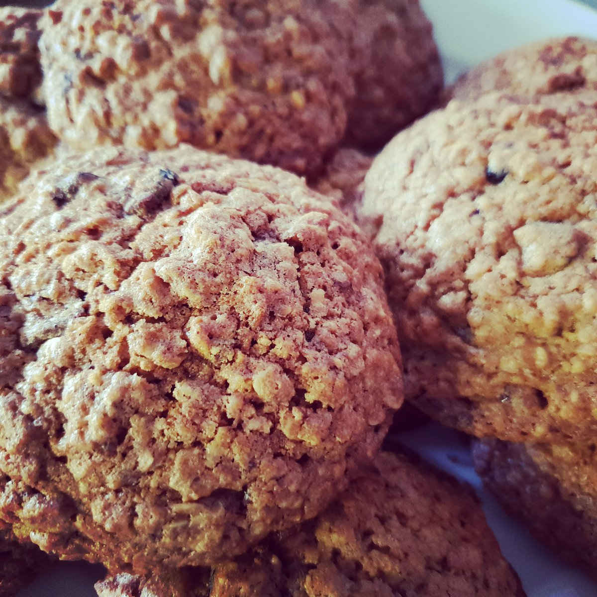 Oatmeal cookies with cranberries and chocolate! #yummy #tasty #cookies https://t.co/6r3oXVfVmI