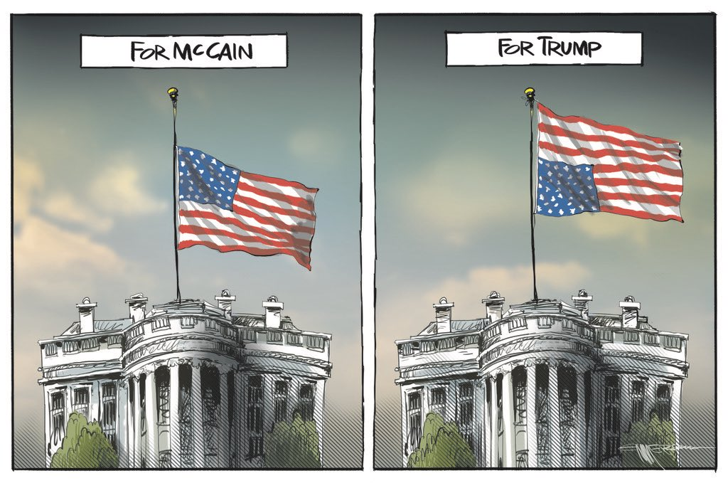 Image result for rod emmerson cartoon flags trump