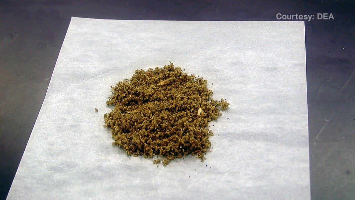 the effects of thc spice and Spice has been sold as a legal, synthetic cannabinoid, or a drug that mimics the effects of marijuana up to a point, spice was legal in the us but that ran out in july 2012 when it was banned at a federal level.
