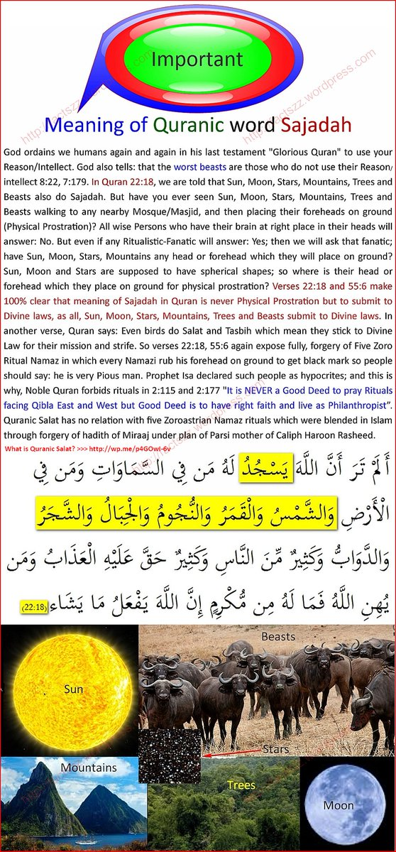 Abd As Samad And Is Meaning Of Word Sajdah In Quran To Place Forehead On Ground Any Temple Mosque Facing Mecca No Bigg