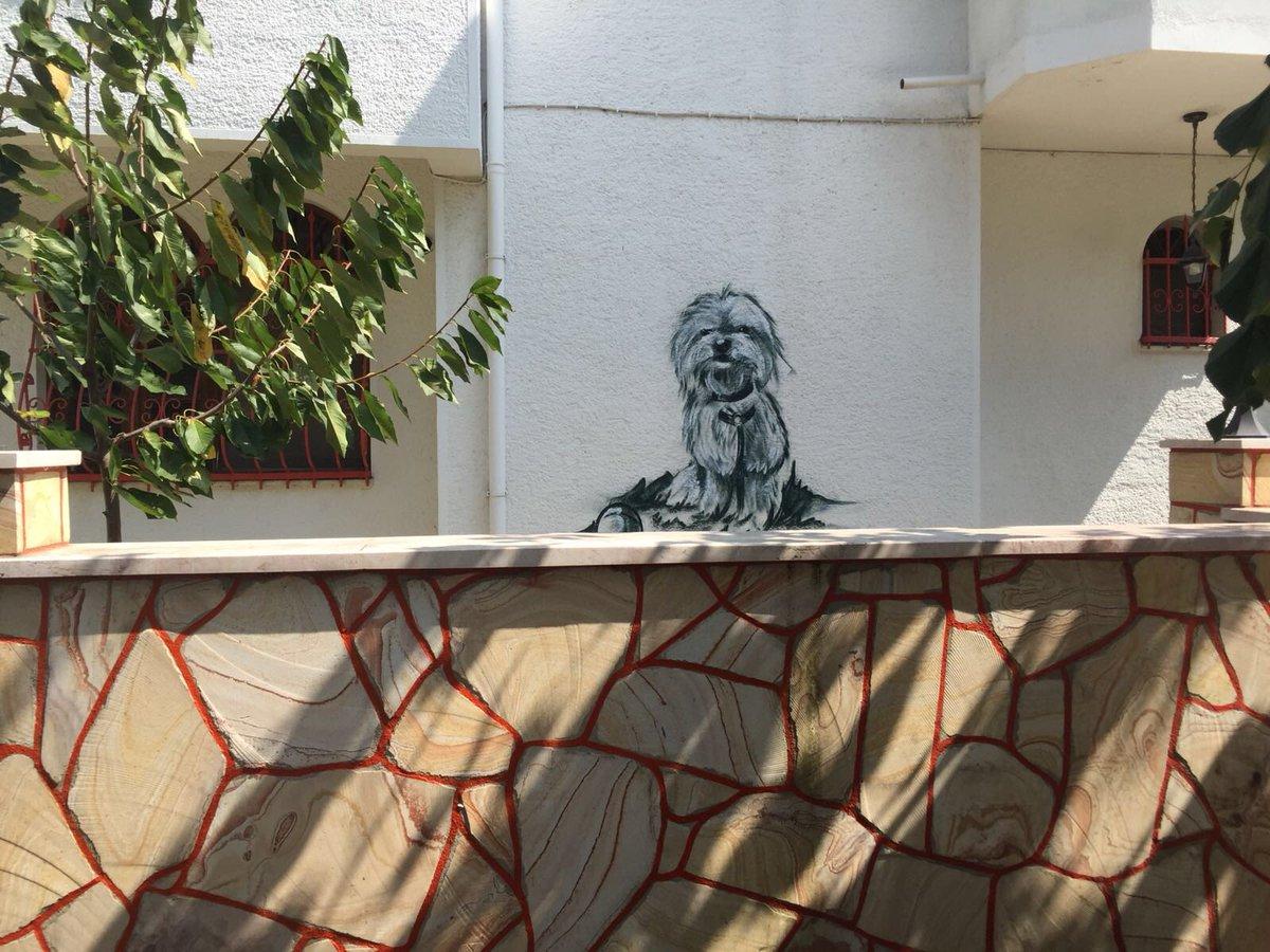 oğluma supriz graffiti yaptık #behlul