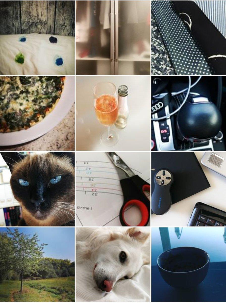 #12von12 Latest News Trends Updates Images - nicolegugger