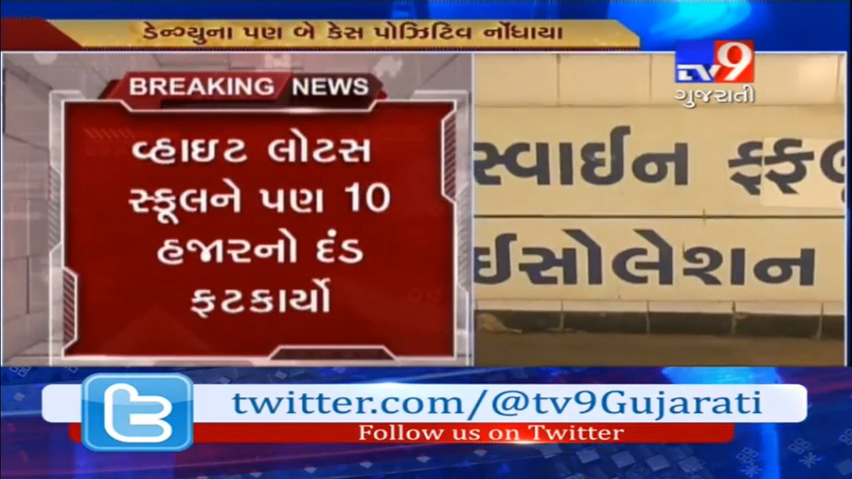 Tv9 Gujarati On Twitter Surat Mosquito Breeding Found In