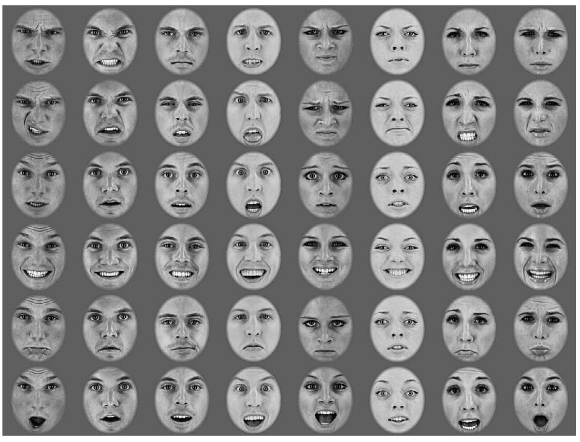 Identifying facial expressions, naked drawings of girls