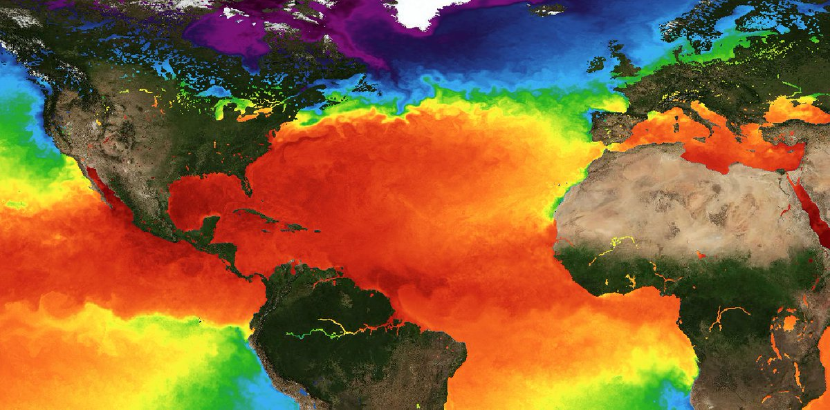 coas earths surface temperatures - 1200×594