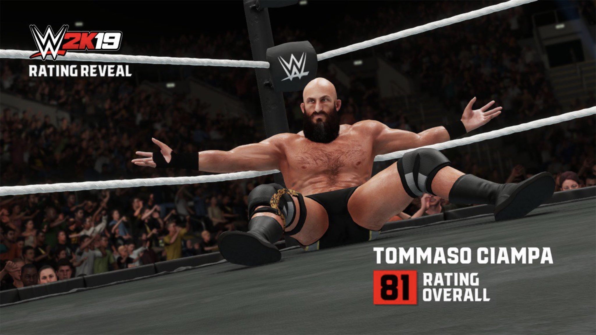 WWE 2K19 : Superstars manquantes & Possible DLC Dm2f6uJUYAApVDh