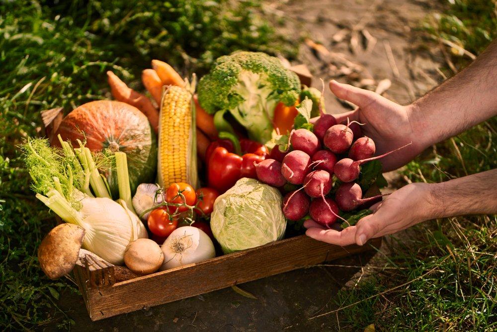conso http   actualites.reponse-conso.fr fruits-et-legumes-se-faire-plaisir-sans-se-ruiner-cest-possible   …pic.twitter.com Z1GMlGCTBK 8be59c651ba