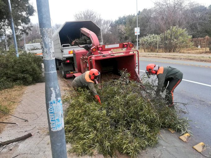 Check out the revised #AReSebetseng Action Plan for this Saturdays clean up, see which areas in your Region will be cleaned up and join in to make Joburg sparkle 🌻🌺 ^LM ➡️ Photo