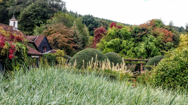 Autumn colours coming to the Wye Valley, at Veddw....  #gardens #gardening #wyevalley #autumncolour https://t.co/ZyYerlULmR