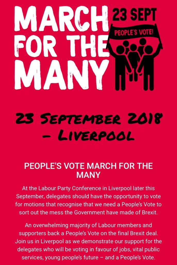 Image result for march for the many people's vote liverpool