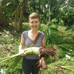 $4500 #scholarship grad fellowship medicinal #Botany Jan 31 deadline info @GCAScholarships #seedyourfuture https://t.co/BR5DX3D78Y