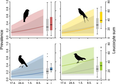Blood parasites prevalence of migrating passerines increases over the spring passage period ow.ly/uTCk30lMbi0 | @JZoology | #ornithology