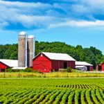 Farmland prices in the U.S. are holding steady despite the recent trade war with China. Read more in today's Appraiser News Online. https://t.co/lO4YMw9hKF