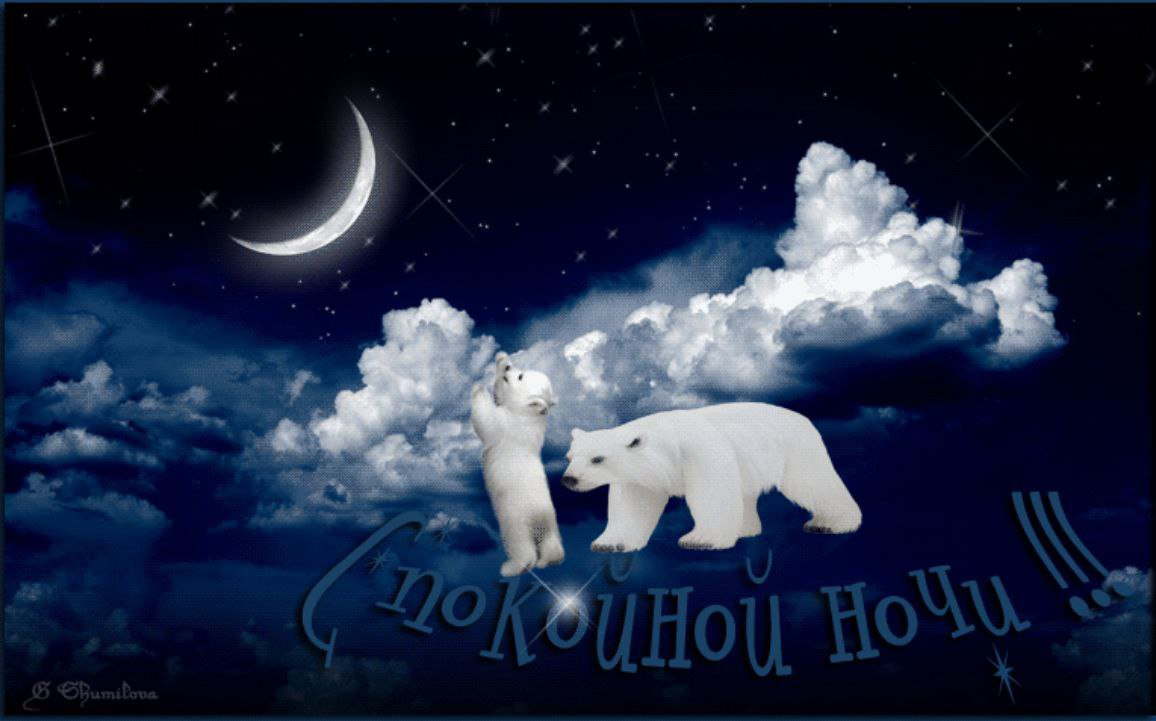 Открытки доброй ночи малыш, птицы небе
