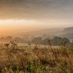 Image for the Tweet beginning: Misty morning, ebble Valley #salisburyhour