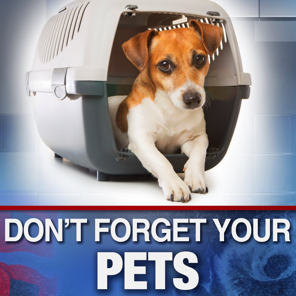 THIS IS IMPORTANT! For the millions of people who are in the crosshairs of Hurricane #Florence and for those evacuating, don't forget about your pets! *SPREAD THE WORD* https://t.co/EcSkiO0HCm