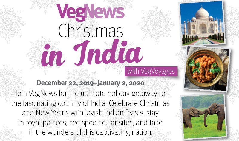 VegNews Christmas in India withVegVoyages https://t.co/GTPI35tSJS https://t.co/Oq3ocYoVHI