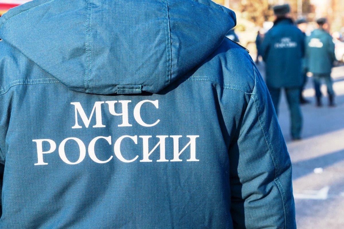 Мчс россии картинки со спины