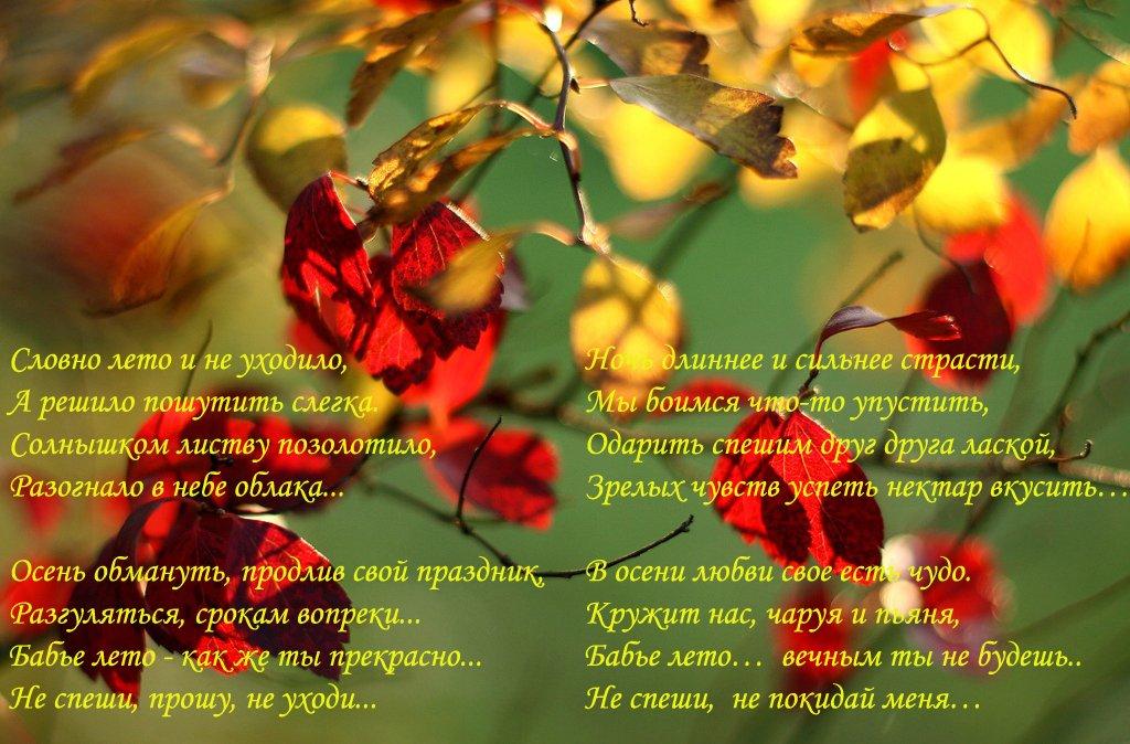 внимание картинки со стихами прощай лето медицина также использует