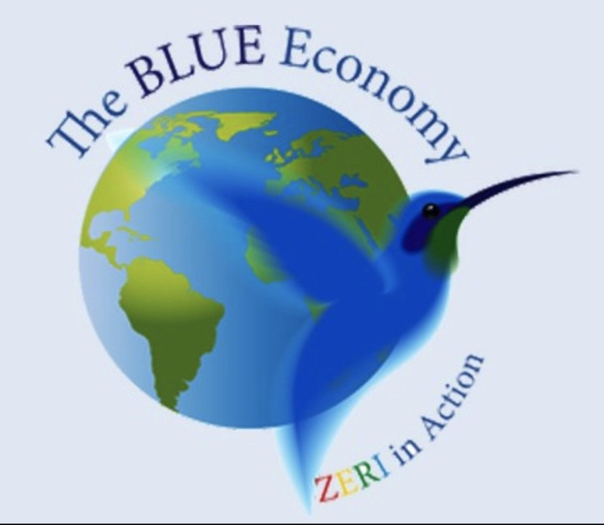 Blue Economy Gunter Pauli Pdf Download