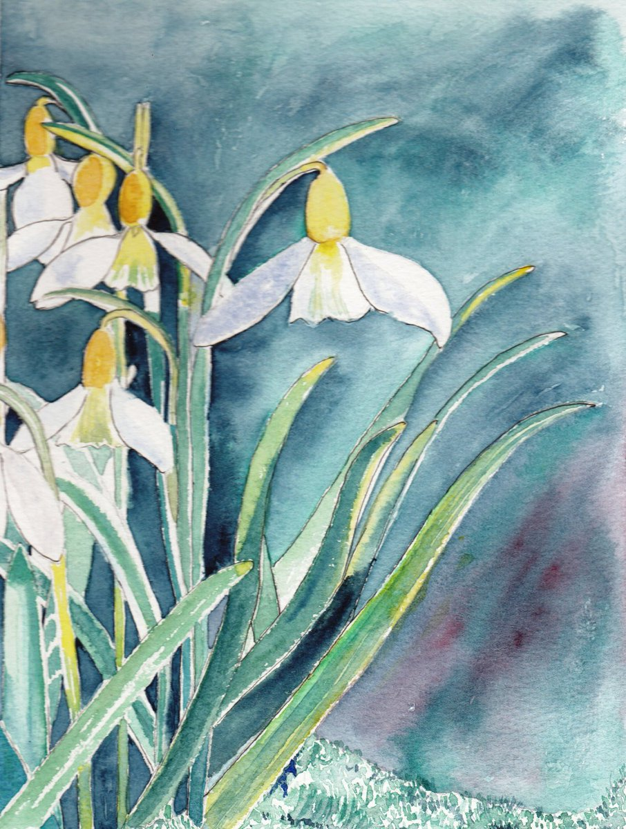 Janet Purves On Twitter Christmas Cards Snowdrop 4 Watercolor