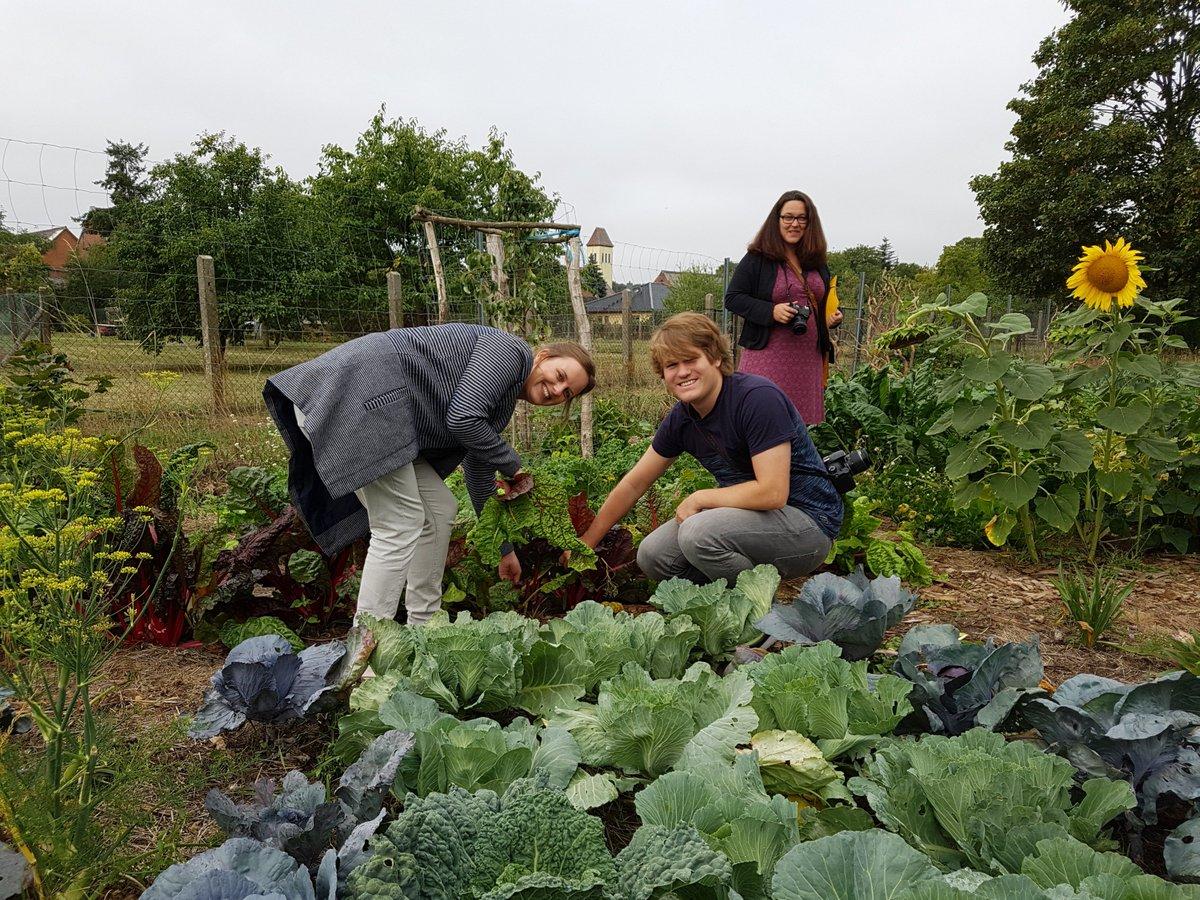 Ernten, kochen, forschen rund ums Thema #Nachhaltigkeit. Die #Küchenspione waren gestern mit #StadtLandFlair in #Kamern unterwegs. #ElbHavelWinkel #LandLeben