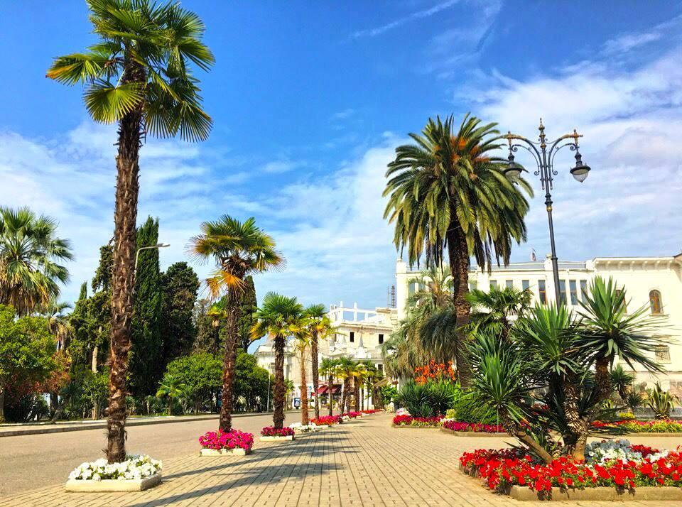 Абхазия город сухум картинки