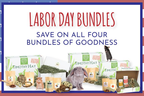 Small Pet Select On Twitter You Still Have Time Check Out The Huge Labor Day Savings At Small Pet Select Https T Co Hzla3rlria Smallpetselect Rabbithay Guineapighay Pettreats Rabbittoys Ferrettreats Guineapigtyos Laborday Specialsale