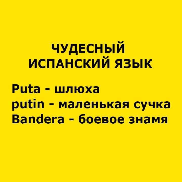 Мрія Путіна - демонтувати Євросоюз, - Макрон - Цензор.НЕТ 68