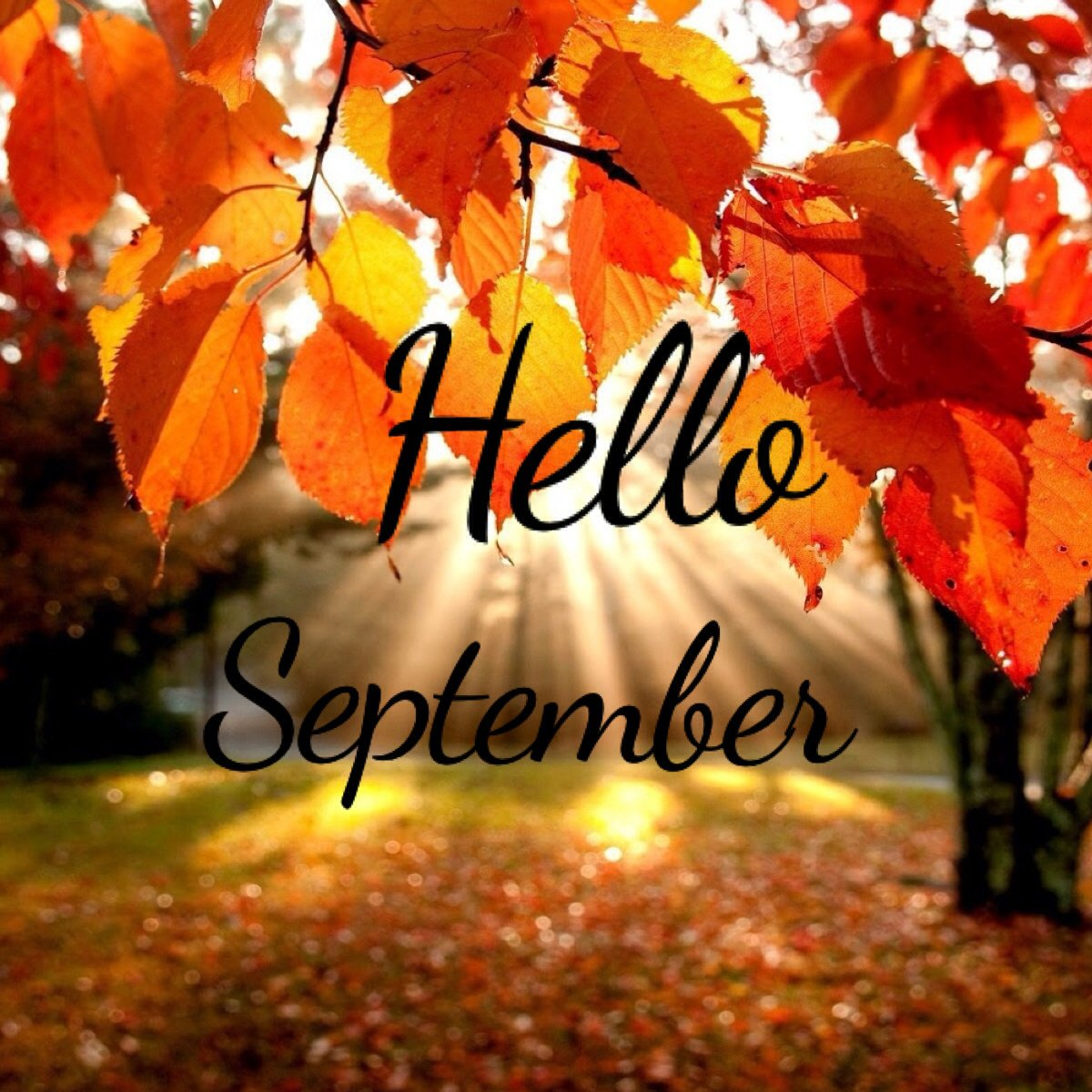 Открытка днем, картинки осень с надписями на английском