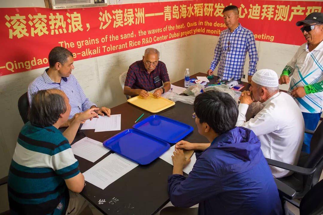 download Feng Shui gegen das Gerümpel