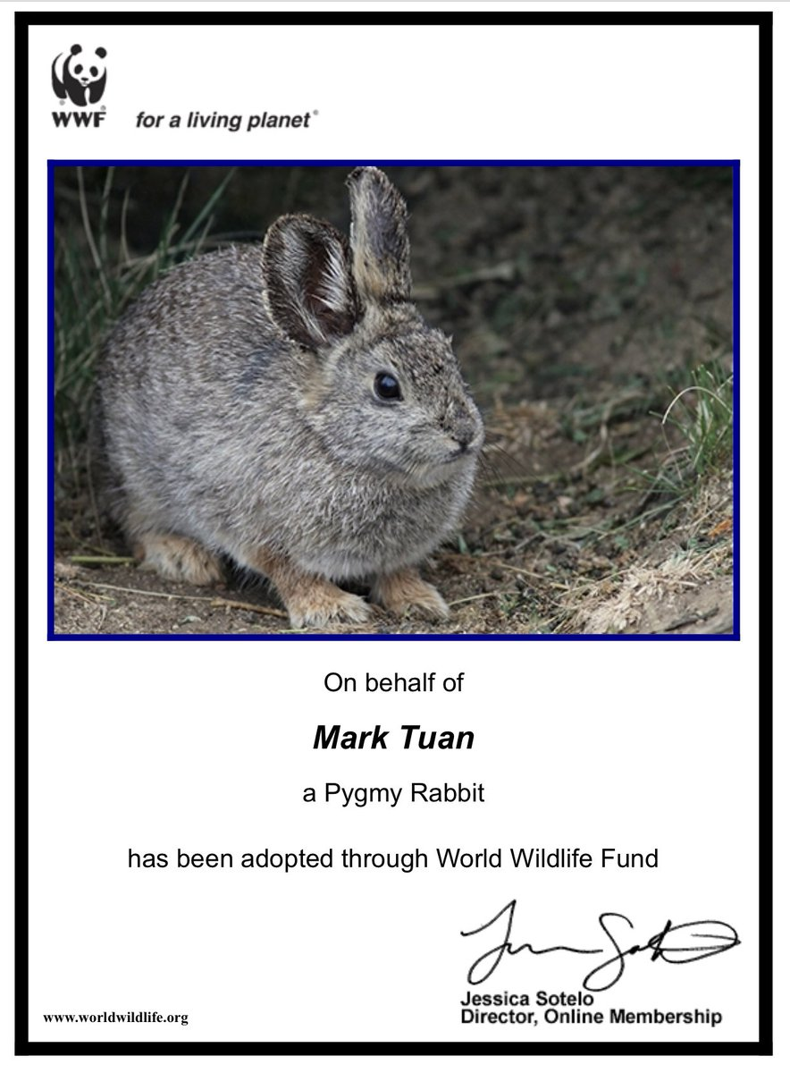 ❤️ Spread the love ❤️  - Mark Birthday Project part.II  We also adopted one pygmy rabbit🐰 and one baby emperor penguin🐧 in Mark's name by donating to World Wildlife Fund.  Thanks to Mark who reminds us to be a better person💗  @mtuan93 @DorineTuan  #XCIIIMARKDAY #MARK