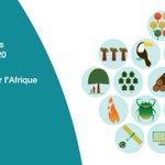 Image for the Tweet beginning: Le Ministre des Forêts du
