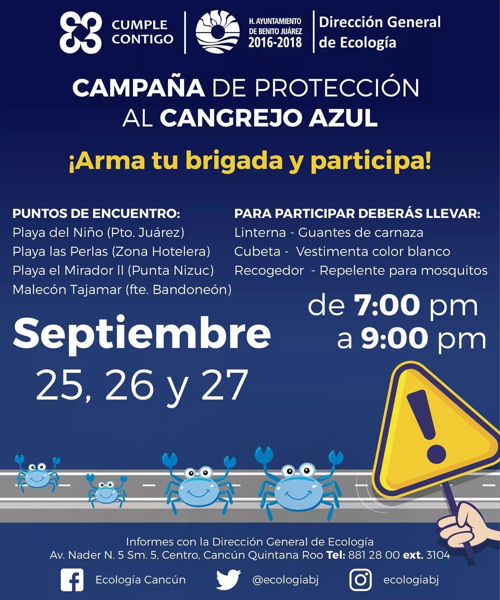 Campaña de Protección al Cangrejo Azul del 25 al 27 de #Septiembre 7:00 pm a 9:00 pm. #Cancún https://t.co/qkc3VJC9SR