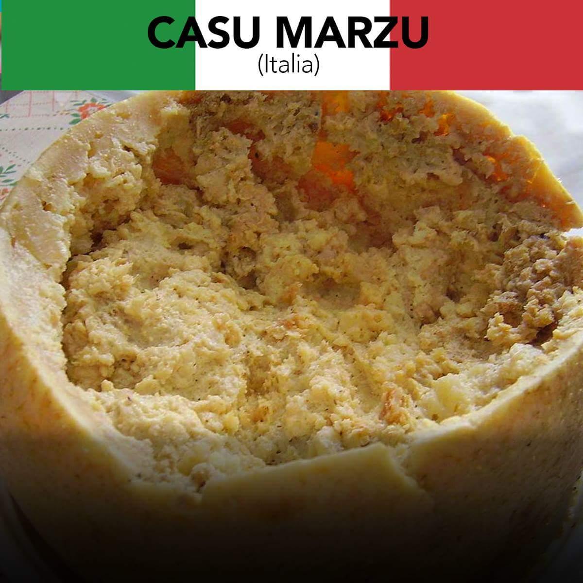 """ElMexicanoMX ar Twitter: """"🇮🇹️ Vs 🇲🇽️ Casu Marzu, es un queso típico de  Cerdeña, Italia. Conocido por estar infestado de larvas vivas de moscas.  Por su parte, el queso Oaxaca es nativo"""