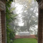 A misty view from the FWP garden this morning. Hopefully a sunny day will follow #Autumn