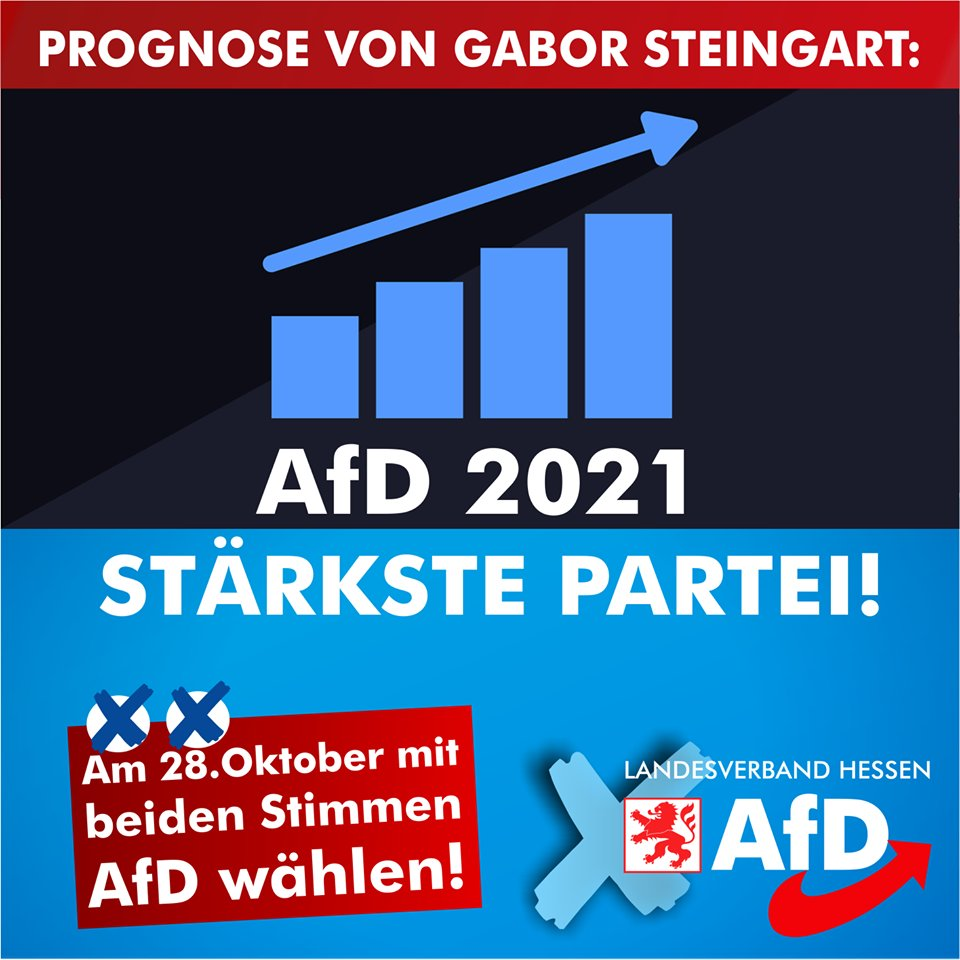 Afd Wahlprogramm Bundestagswahl 2021