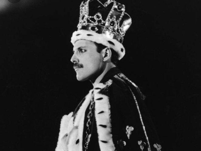 Happy Birthday Freddie!