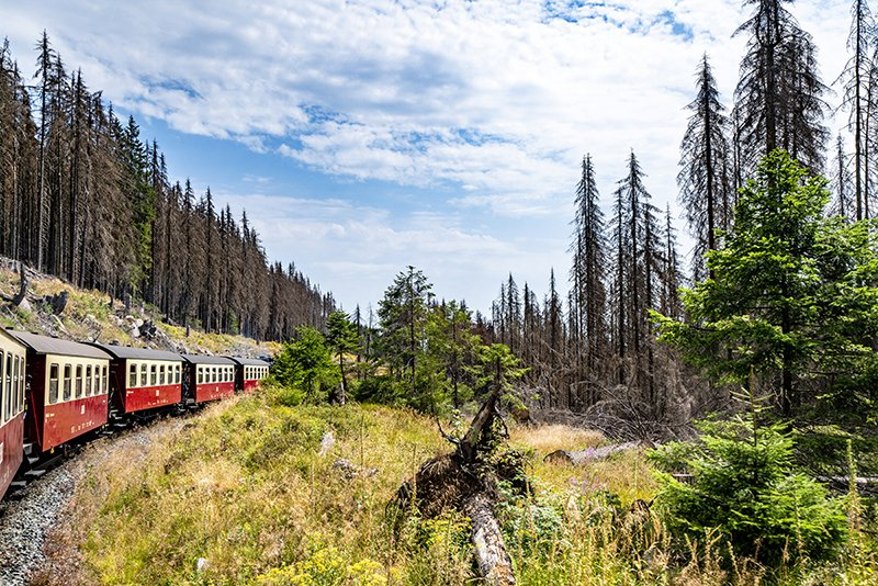 Travelling by train. Thank you for all the kind words on my website polarpx.com/polarpx_photo_… #landscape #train #transport #photography #nature #photographer