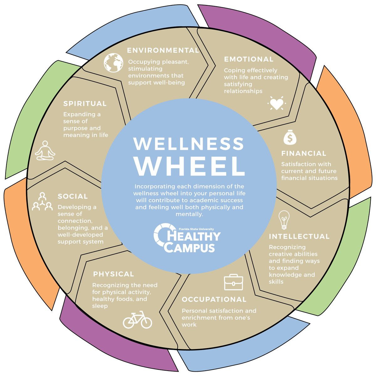wellness wheel activity