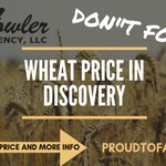 Image for the Tweet beginning: DON'T FORGET! #Wheat price for
