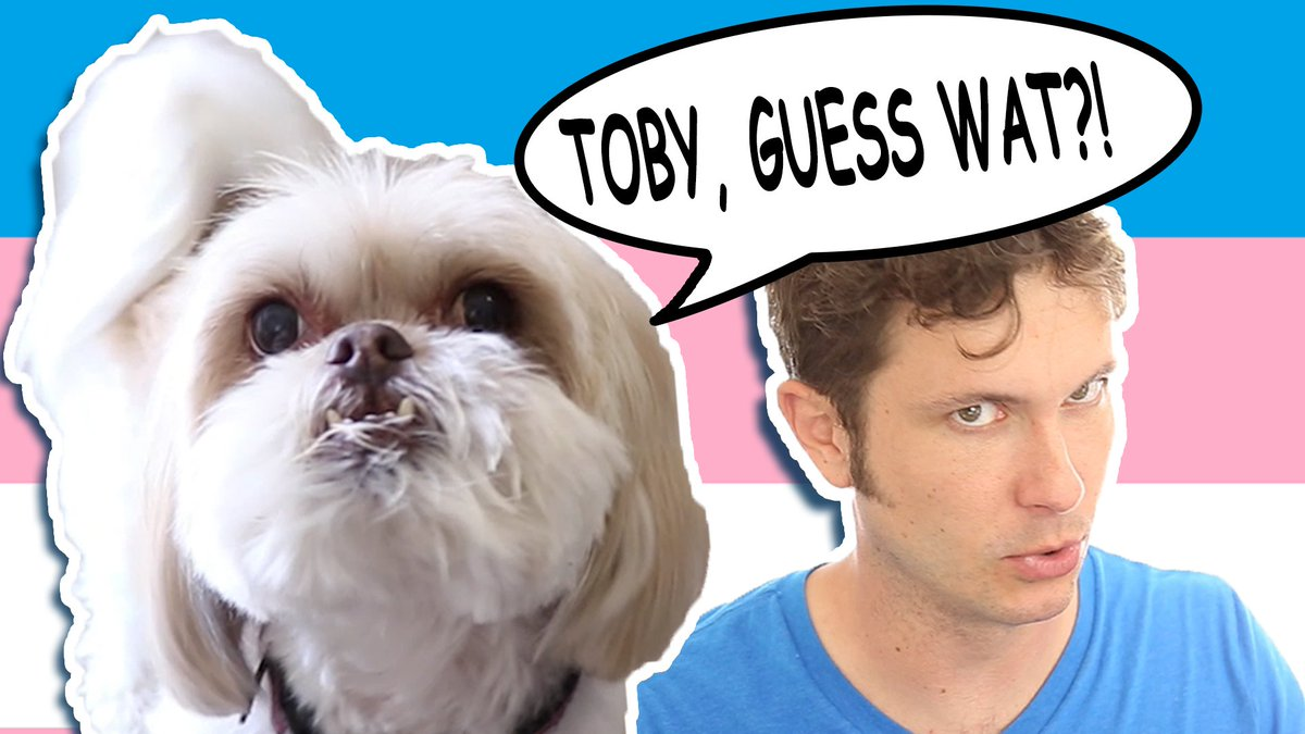 MY DOG IS TRANS (Toby & Gryphon) youtube.com/watch?v=ezaF7s… #tobuscus #gryphon