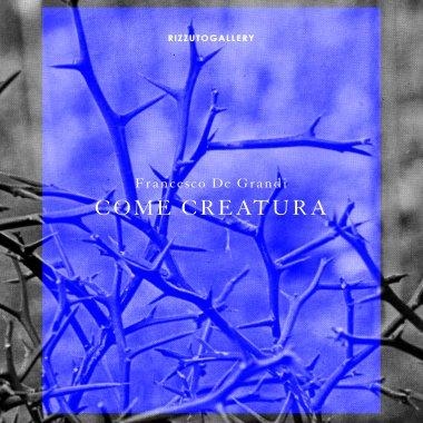 """#PalermoCapitaleCultura - Come CreaturaDal 15 settembre al 4 novembre, presso la Galleria Rizzuto si terrà la mostra """"Come Creatura"""" https:// www.comune.palermo.it/appuntamenti_det.php?id=19521  - Ukustom"""