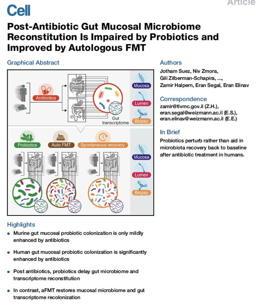 why probiotics after antibiotics